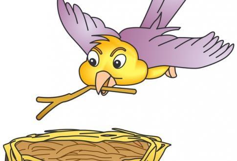 """Bébés lecteurs """"Les oiseaux fond leur nid"""""""